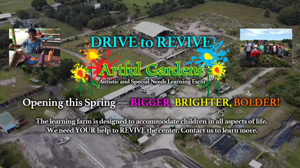 Drive to Revive